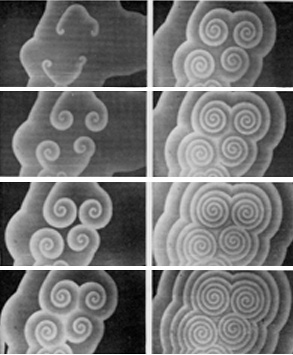 File:BZ Spiral waves.jpg